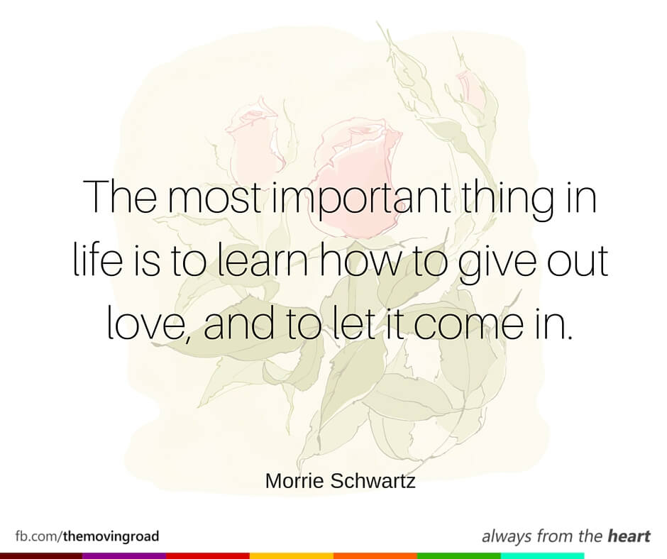 The very best of love quotes