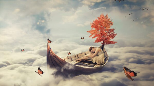 spiritual journey girl in boat with butterflies and red tree